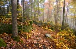 Niebla en las montañas de Allegheny Foto de archivo libre de regalías