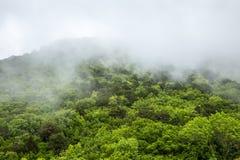 Niebla en las montañas Paisaje místico Fotos de archivo libres de regalías