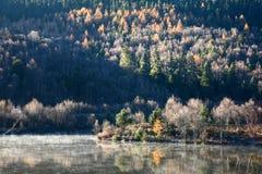 Niebla en otoño Imagen de archivo libre de regalías