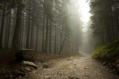 Niebla en Tatras Fotos de archivo
