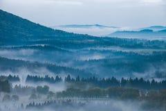 Niebla en un bosque de la montaña Fotografía de archivo
