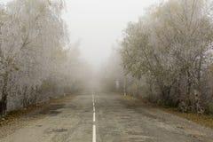 Niebla en un camino del otoño Fotos de archivo libres de regalías