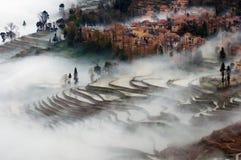 Niebla en Yuanyang Imagenes de archivo