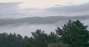 Niebla entre las montañas en la salida del sol metrajes