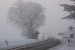 Niebla gris Imagenes de archivo