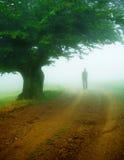 Niebla gruesa Imágenes de archivo libres de regalías