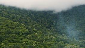 Niebla lechosa suave que envuelve las altas colinas de las montañas del Cáucaso, naturaleza sin tocar metrajes