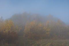 Niebla mística Imagen de archivo libre de regalías