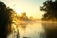 Niebla matutinal en el río. Fotografía de archivo
