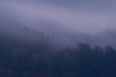 Niebla púrpura Imágenes de archivo libres de regalías
