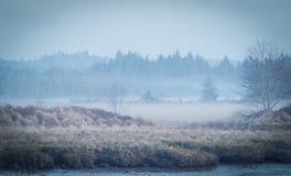 Niebla pesada a lo largo del río imagenes de archivo
