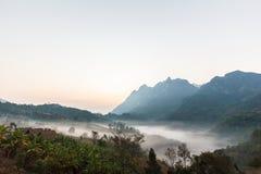 niebla por la mañana Imágenes de archivo libres de regalías