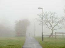 Niebla que cubre un camino en un parque Imágenes de archivo libres de regalías