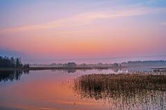 Niebla sobre el lago misterioso Fotos de archivo libres de regalías