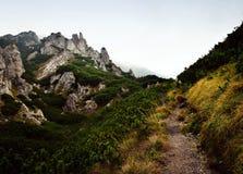 Niebla sobre el paisaje de la roca del otoño Foto de archivo libre de regalías