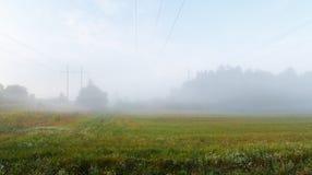 Niebla sobre el prado Fotos de archivo