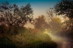 Niebla sobre el río Fotografía de archivo libre de regalías