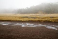 Niebla sobre la cumbre Imagen de archivo libre de regalías