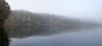 Niebla sobre la reflexión de la selva tropical de Eecham del lago Imagen de archivo