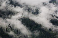 Niebla sobre las montañas Foto de archivo libre de regalías