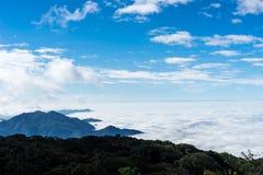 Niebla sobre las montañas con el fondo del cielo azul en el inthanon del doi imagen de archivo
