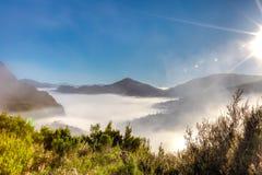 Niebla surrealista de la mañana Fotos de archivo libres de regalías