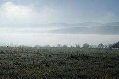 Niebla a través del prado en mañana soleada Foto de archivo libre de regalías