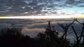 Niebla y niebla de la mañana que se mueven lentamente desde punto de visión en tiempo de la salida del sol en el dao de Doi Luang metrajes