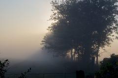 Niebla y niebla hermosas de la madrugada sobre una granja Foto de archivo
