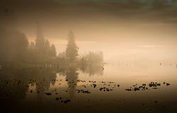 Niebla y reflexiones en el lago. Foto de archivo libre de regalías