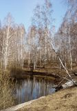 niebo błękitny wczesna jeziorna wiosna Fotografia Royalty Free