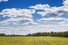 Niebo chmur pole Obrazy Stock