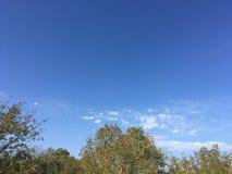 Niebo, drzewa, chmury Obrazy Royalty Free