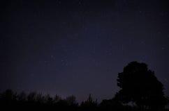 niebo gwiaździsty Zdjęcia Stock