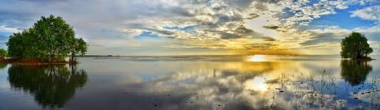 niebo i morze z drzewem Obrazy Royalty Free