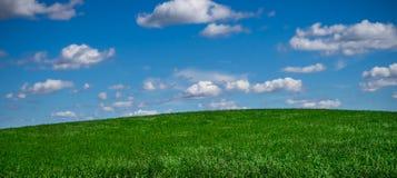 Niebo i pole Zdjęcie Royalty Free