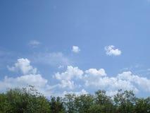 Niebo i roślinność w wiośnie Zdjęcia Royalty Free