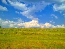 Niebo i trawa Zdjęcia Royalty Free