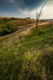 niebo nad trawy polem podczas lata, wiejski krajobraz Zdjęcie Stock