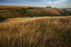 niebo nad trawy polem, wiejski krajobraz Fotografia Royalty Free
