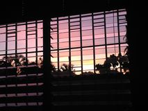 Niebo pełno purpurowy wschód słońca Zdjęcia Royalty Free