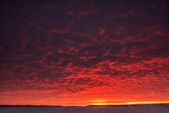 niebo piękny zmierzch Mroczne dramatyczne czerwieni chmury Fotografia Royalty Free