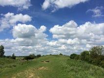 Niebo ptaka chmury moder Fotografia Royalty Free