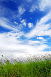 niebo trawy Fotografia Royalty Free