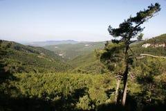 Niebo w góry Ida im jesieni, Turcja Obrazy Stock