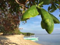 Niebo wydaje się troszkę zamkniętym przy plażą zdjęcia royalty free