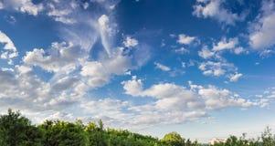 Niebo z cumulus chmurami i chmury pierzastej chmurą na tle drzewo Obraz Royalty Free