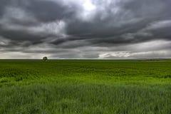 niebo zachmurzone burzliwe Zdjęcie Stock