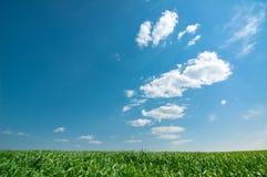 niebo zachmurzone trawy Fotografia Royalty Free