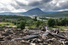 Nieboszczyk i żywa natura blisko Monchegorsk Fotografia Stock